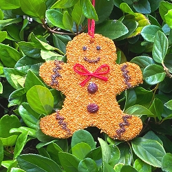 Gingerbread Man Christmas Cookie Bird Seed Ornament Set of 12